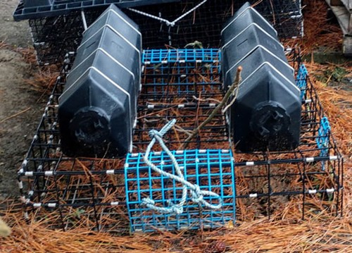 Milford Haven oyster cages